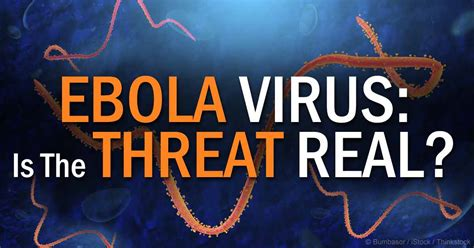 Should You Worry About an Ebola Outbreak in the US?