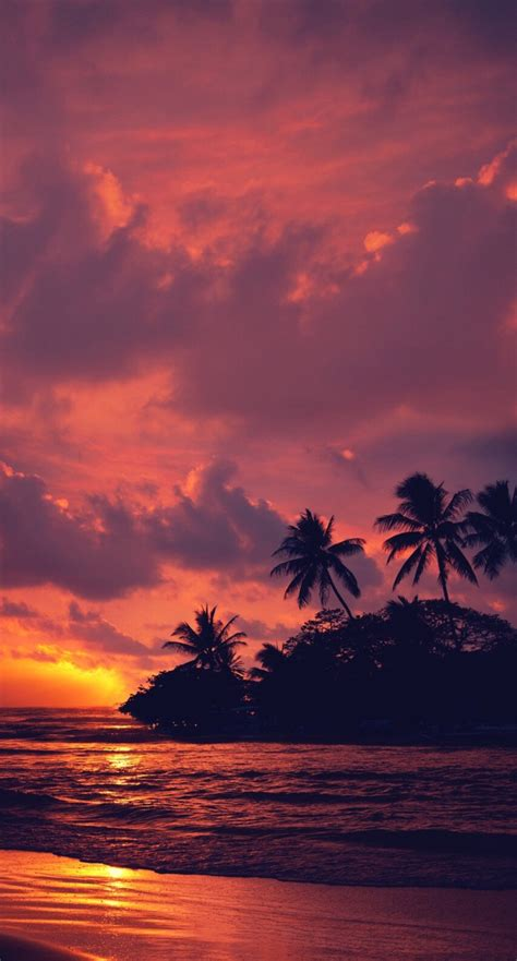 nature, Landscape, Water, Clouds, Trees, Beach, Sunset