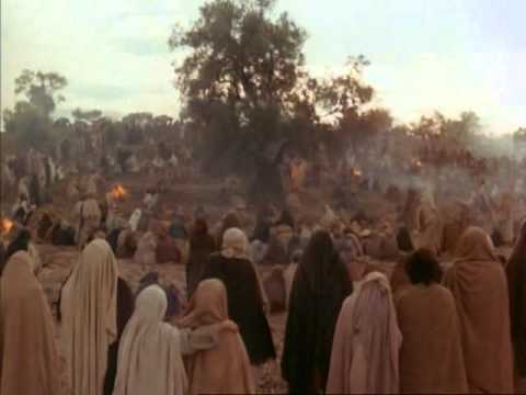 Matthew 7:13-14 NIV (With images) | Jesus death, Book of